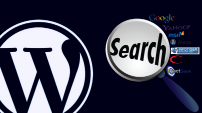 SEO Guide: How to Enhance WordPress Site Visibility on Search Engines  (Guest Post)