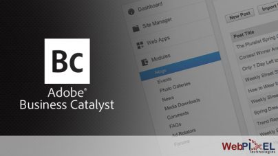 Say Hello to Adobe Business Catalyst